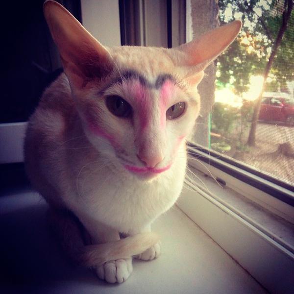7 ошибок в макияже, которые придают лицу утомленный и несвежий вид