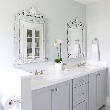 9 лучших комнатных растений для ванной комнаты